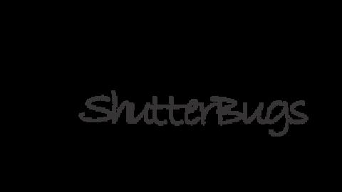 shutter bugs